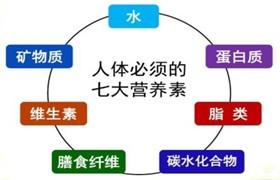 """刘晓丽:维持细胞健康的""""七大营养元素""""是什么?(细胞健康,人体才会健康)"""